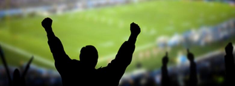 Football fan celebrating