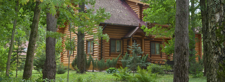 A chalet in the woods