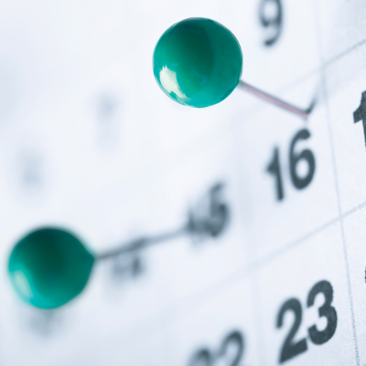 Pins on a calendar