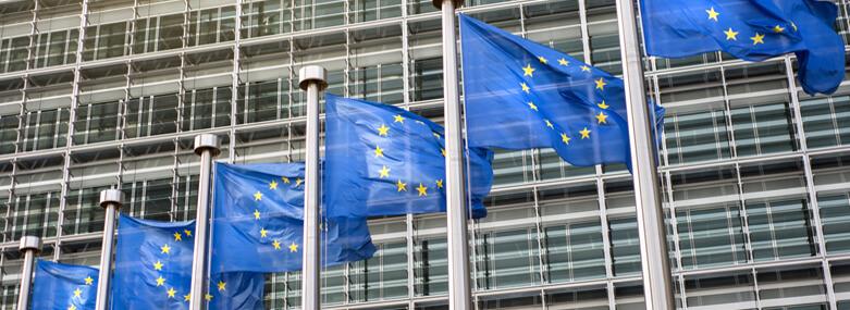 EU Flags outside office