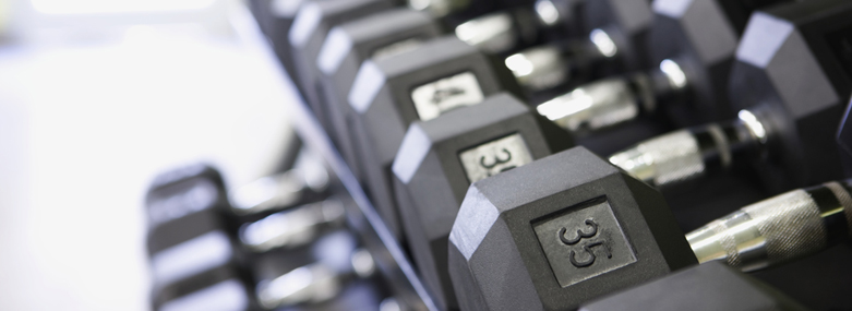 Row of Dumbbells on Rack