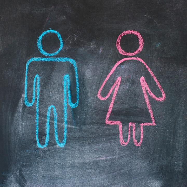 Gender figures