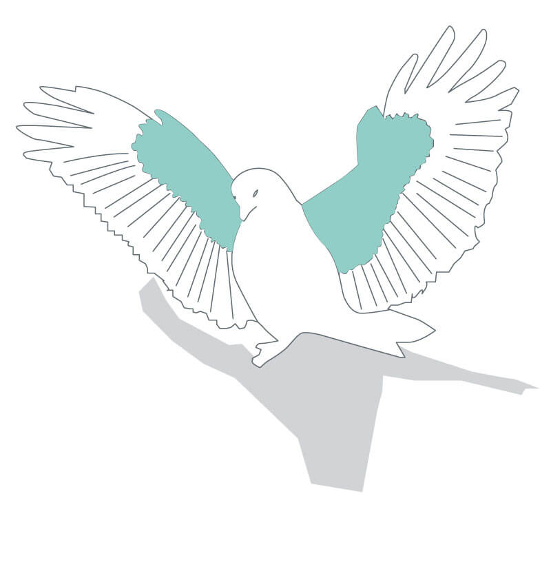 line drawing of a dove