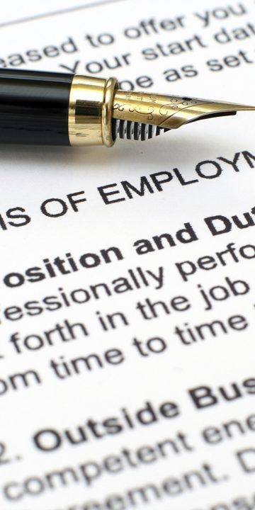 Employment contract, with terms of employment section