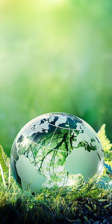 Environment-earth-on-grass-720x720-jpg.jpg