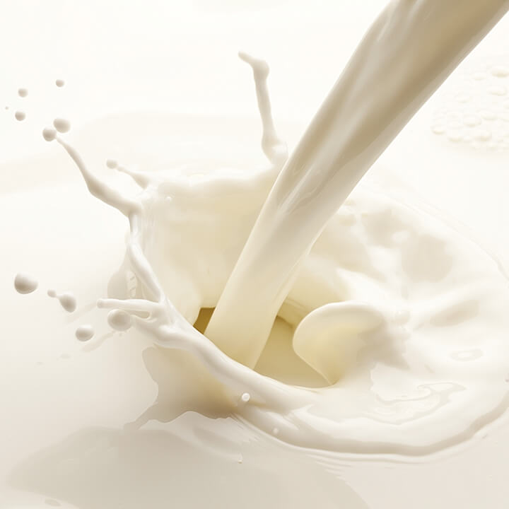 Splash of milk on a white background